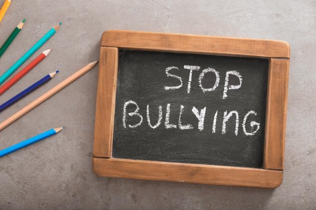bullyingguidecoverphoto