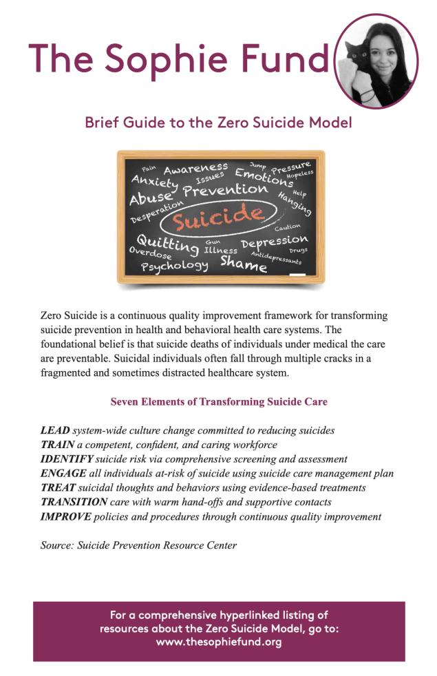 Zero Suicide Model Guide